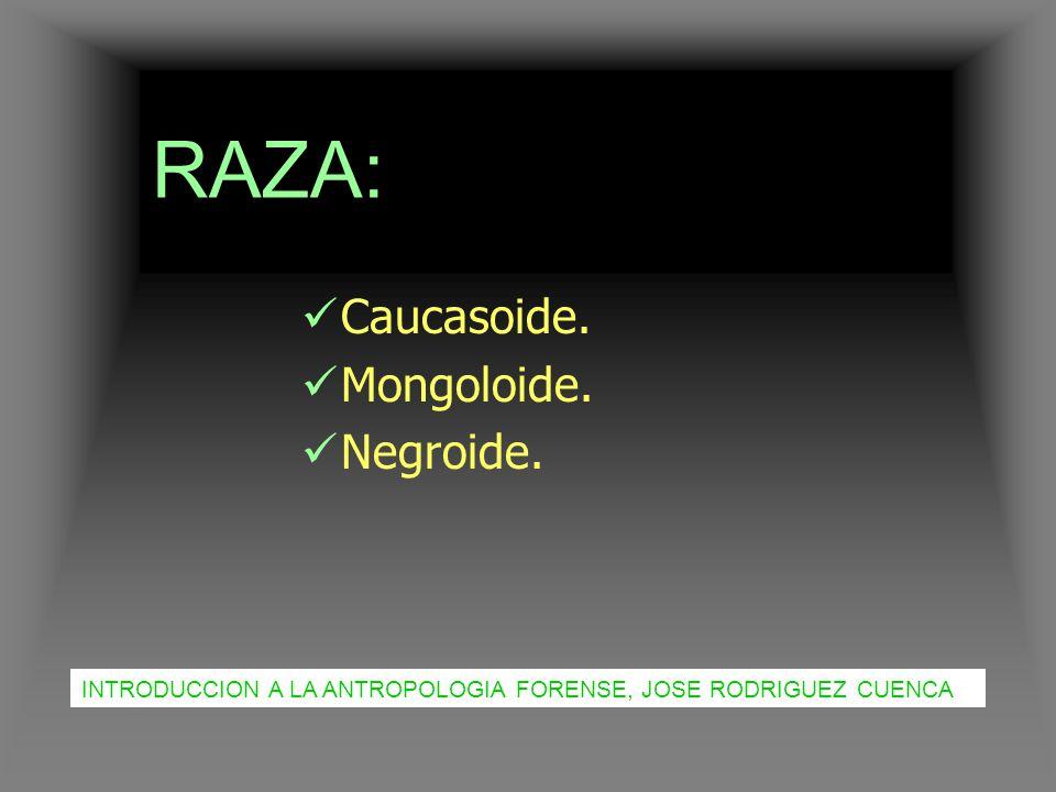 RAZA: Caucasoide. Mongoloide. Negroide.