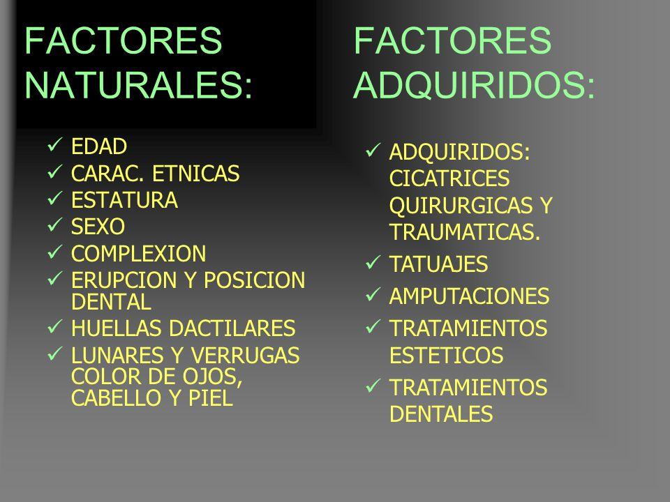 FACTORES NATURALES: FACTORES ADQUIRIDOS: EDAD CARAC. ETNICAS ESTATURA
