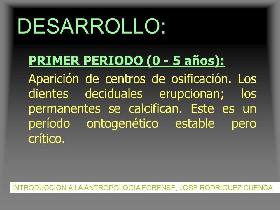 DESARROLLO: PRIMER PERIODO (0 - 5 años):