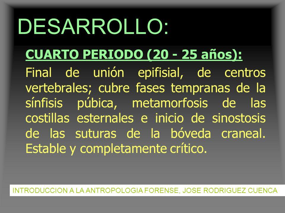 DESARROLLO: CUARTO PERIODO (20 - 25 años):