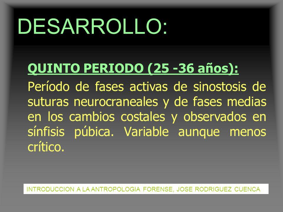 DESARROLLO: QUINTO PERIODO (25 -36 años):