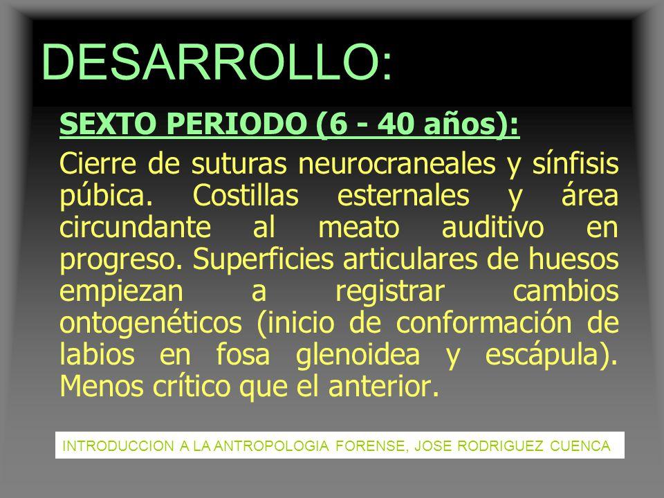 DESARROLLO: SEXTO PERIODO (6 - 40 años):