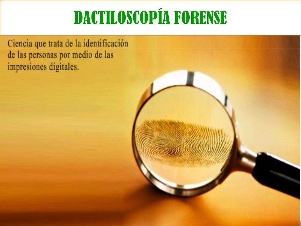 DACTILOSCOPÍA FORENSE