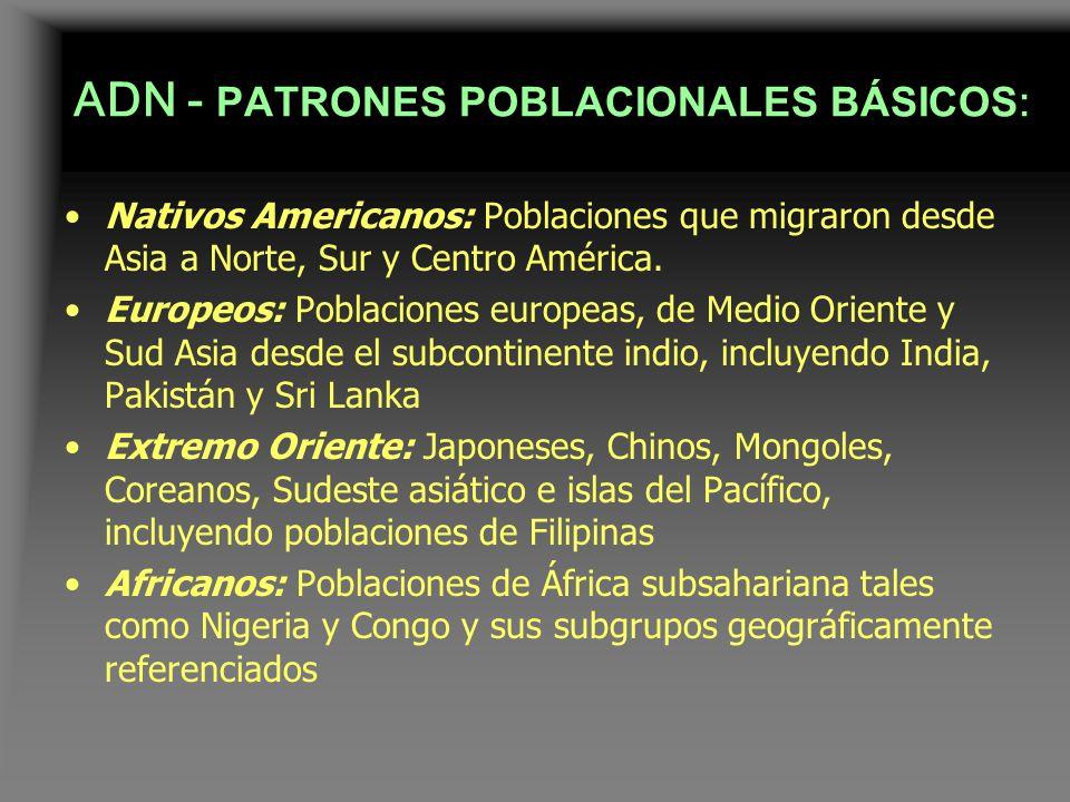 ADN - PATRONES POBLACIONALES BÁSICOS: