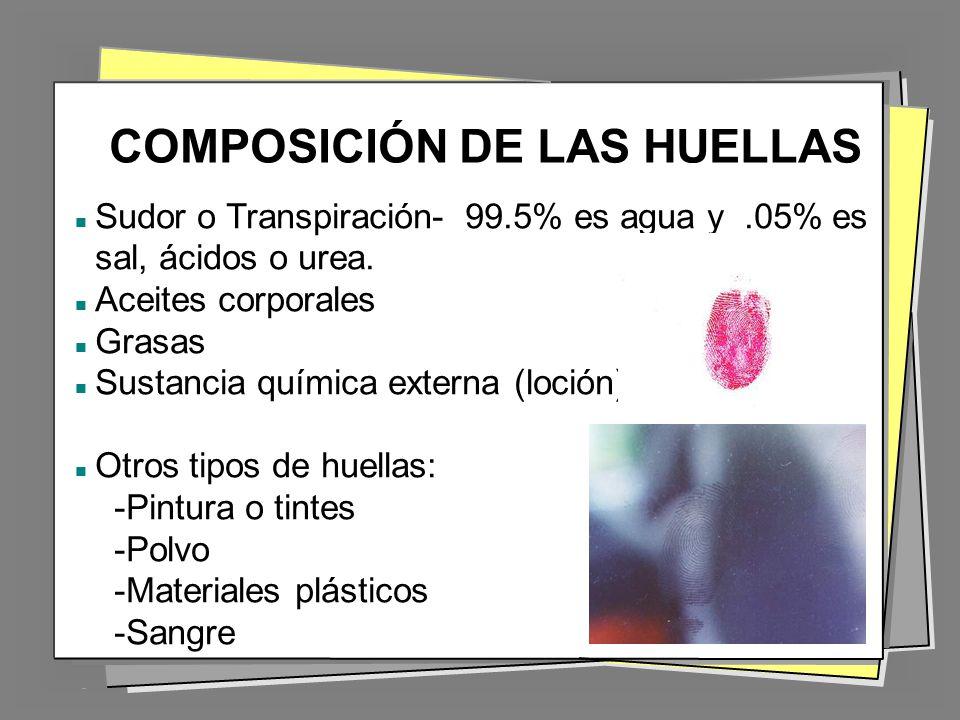 COMPOSICIÓN DE LAS HUELLAS