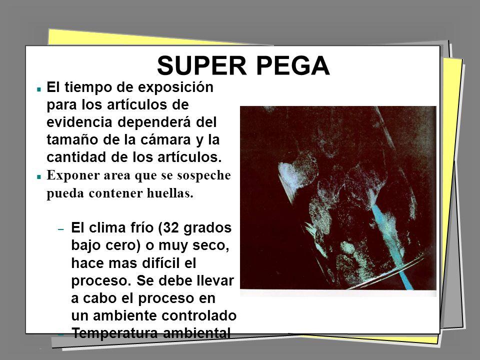 SUPER PEGA El tiempo de exposición para los artículos de evidencia dependerá del tamaño de la cámara y la cantidad de los artículos.