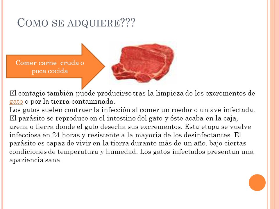 Comer carne cruda o poca cocida