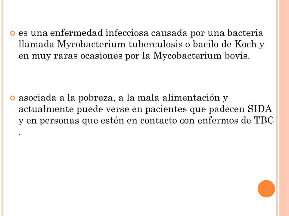 es una enfermedad infecciosa causada por una bacteria llamada Mycobacterium tuberculosis o bacilo de Koch y en muy raras ocasiones por la Mycobacterium bovis.