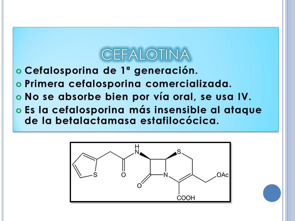 CEFALOTINA Cefalosporina de 1ª generación.