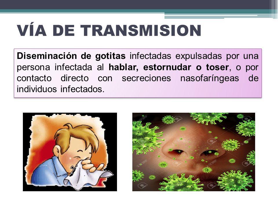 VÍA DE TRANSMISION