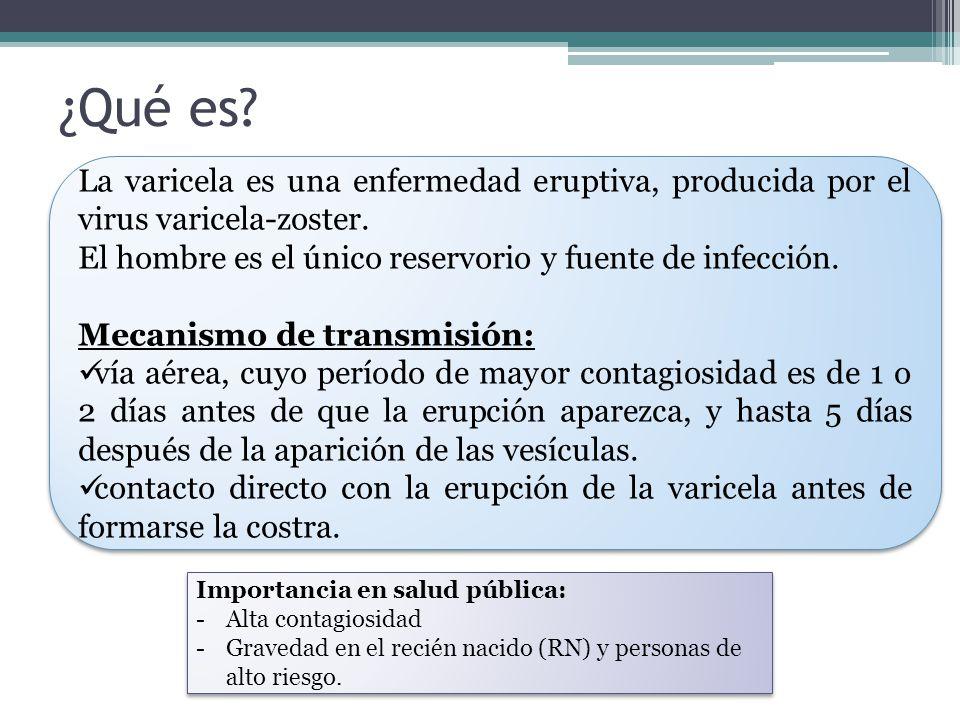 ¿Qué es La varicela es una enfermedad eruptiva, producida por el virus varicela-zoster. El hombre es el único reservorio y fuente de infección.