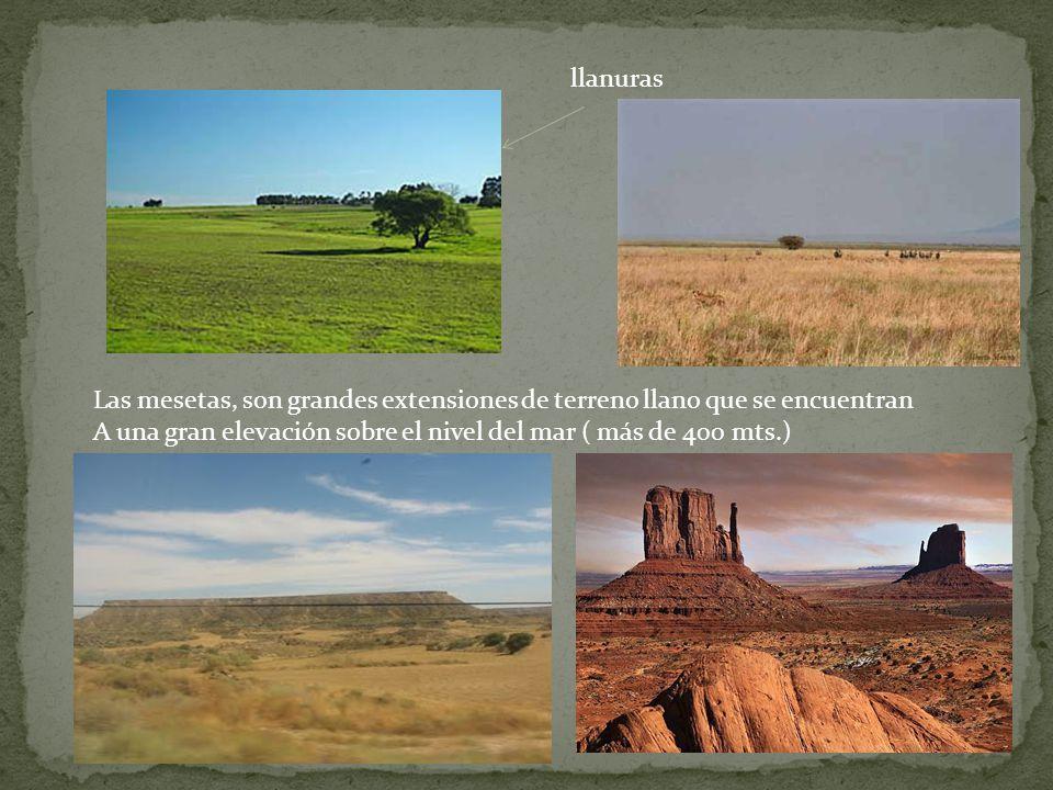 llanuras Las mesetas, son grandes extensiones de terreno llano que se encuentran.