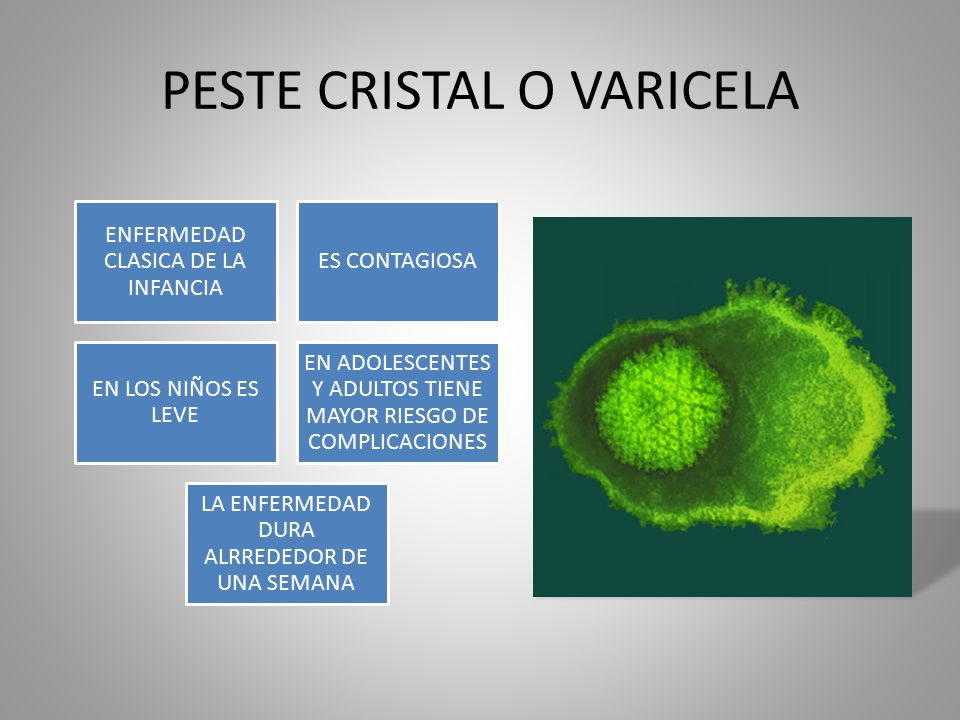 PESTE CRISTAL O VARICELA