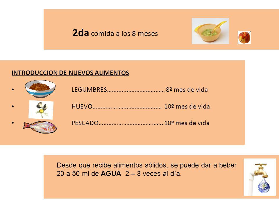 2da comida a los 8 meses INTRODUCCION DE NUEVOS ALIMENTOS