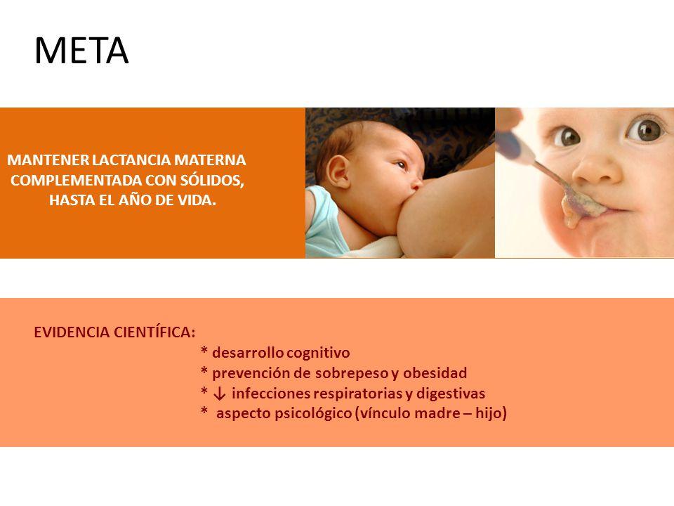 META MANTENER LACTANCIA MATERNA COMPLEMENTADA CON SÓLIDOS,