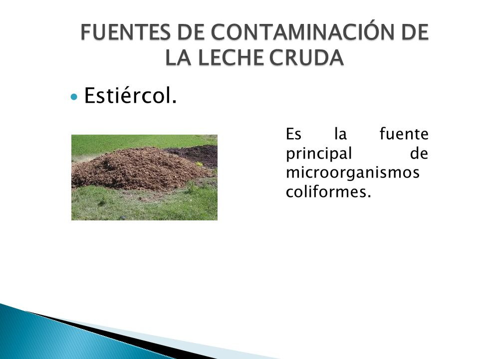 FUENTES DE CONTAMINACIÓN DE LA LECHE CRUDA