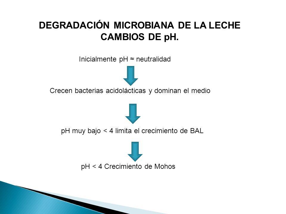 DEGRADACIÓN MICROBIANA DE LA LECHE