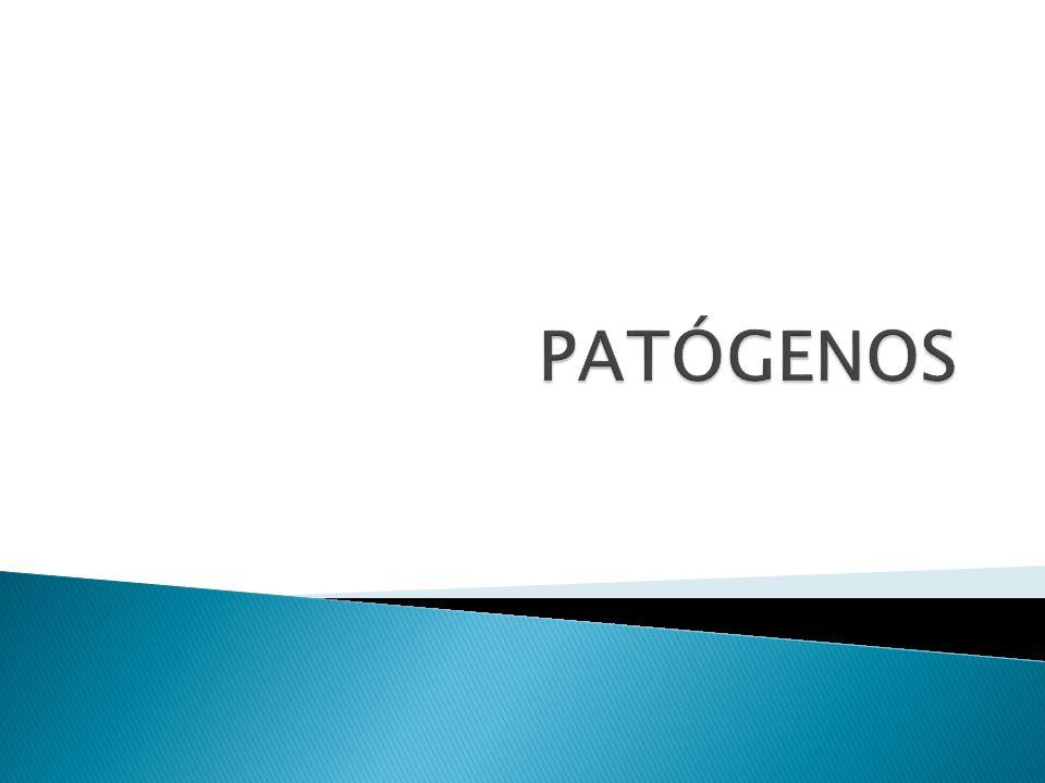 PATÓGENOS