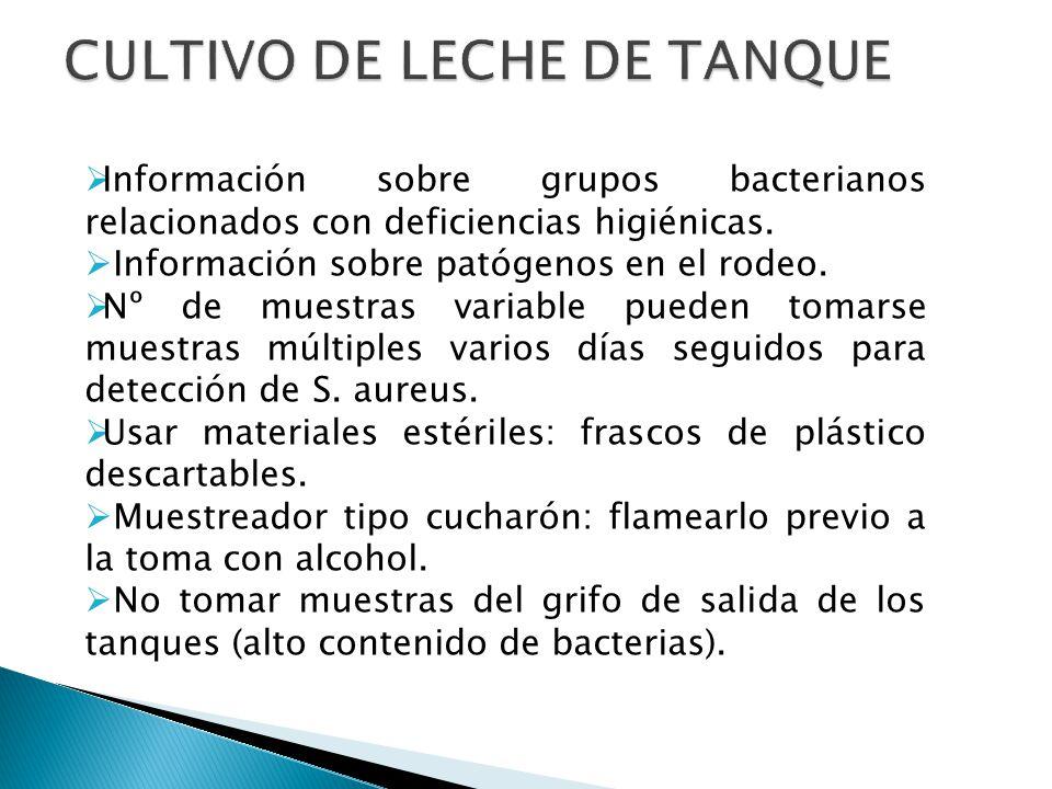 CULTIVO DE LECHE DE TANQUE