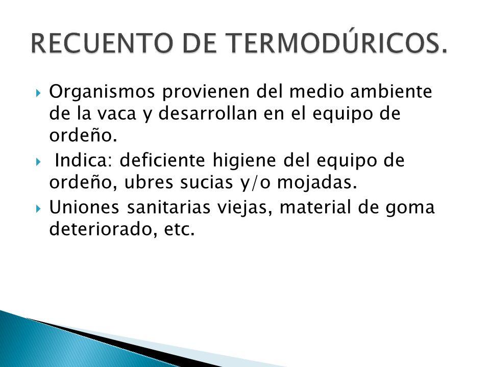 RECUENTO DE TERMODÚRICOS.