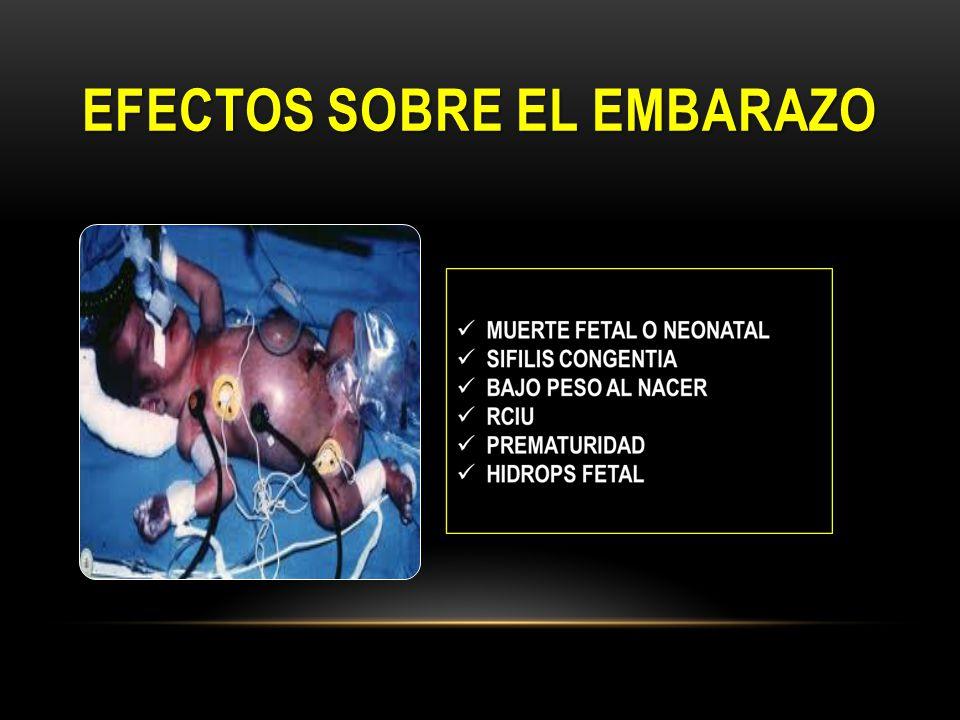Efectos sobre el embarazo
