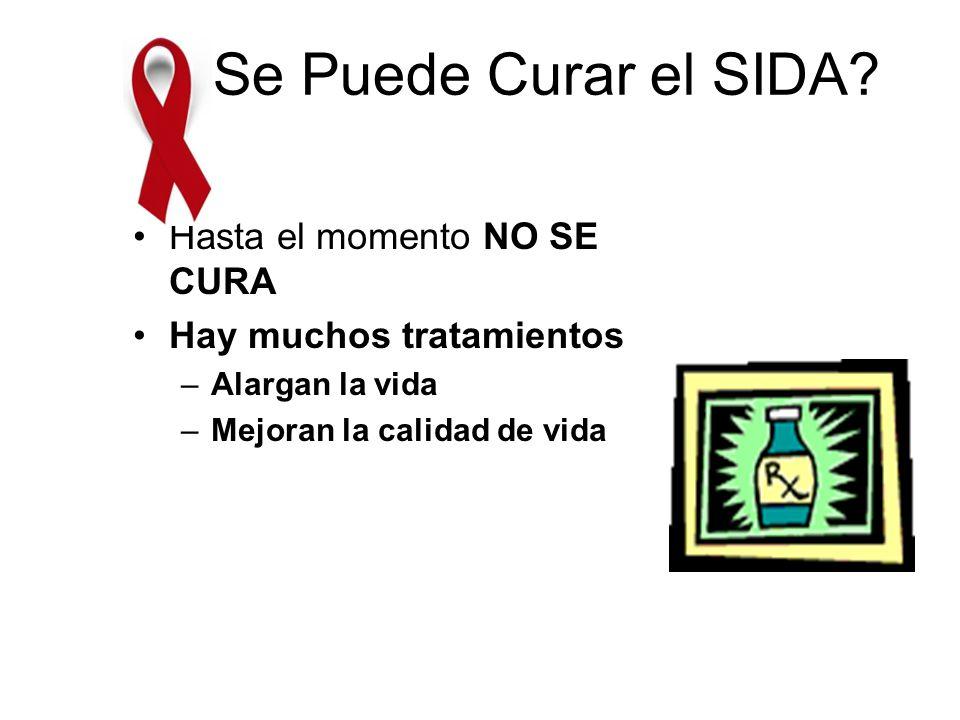 ¿Se Puede Curar el SIDA Hasta el momento NO SE CURA