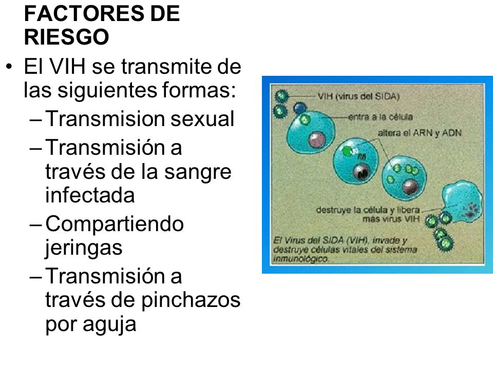 El VIH se transmite de las siguientes formas: Transmision sexual