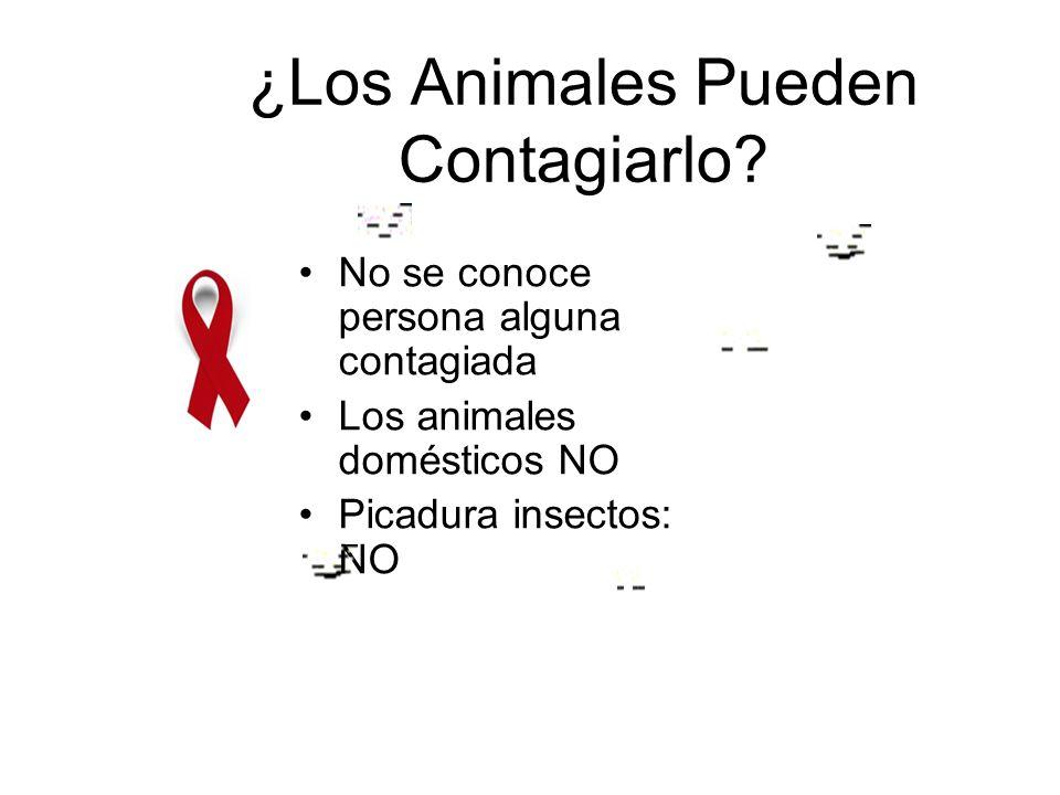 ¿Los Animales Pueden Contagiarlo