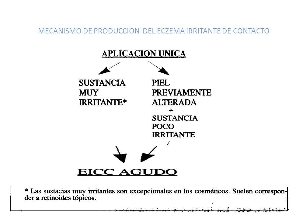 MECANISMO DE PRODUCCION DEL ECZEMA IRRITANTE DE CONTACTO