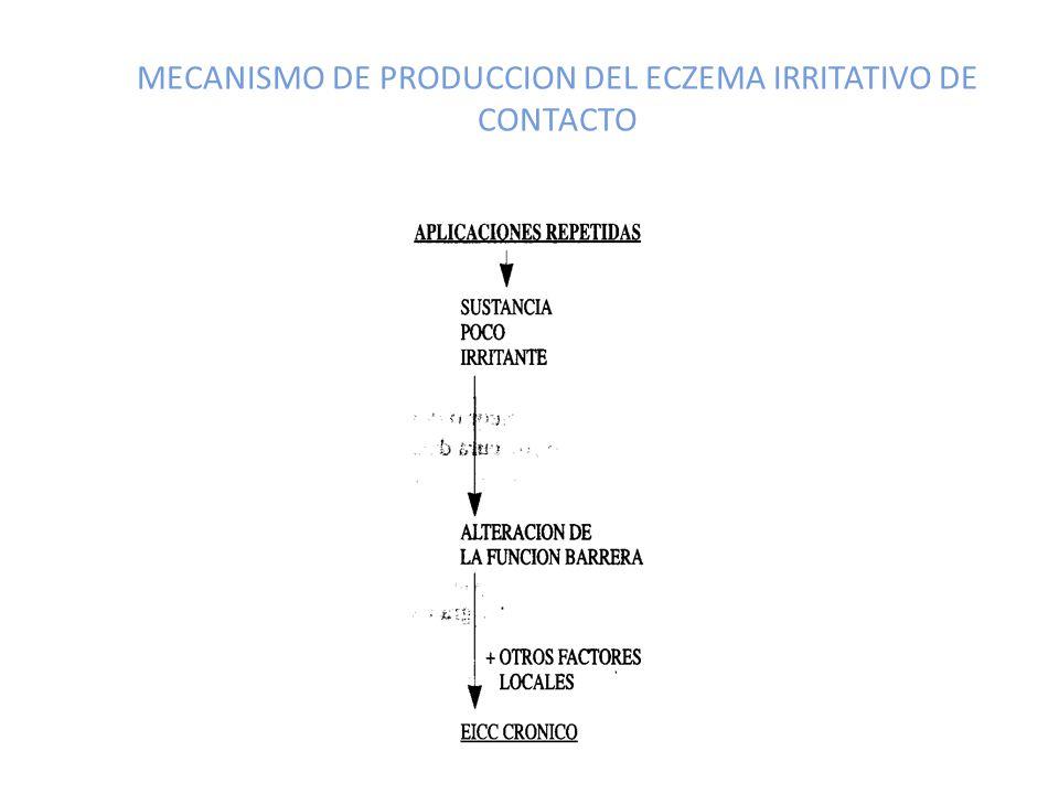 MECANISMO DE PRODUCCION DEL ECZEMA IRRITATIVO DE CONTACTO