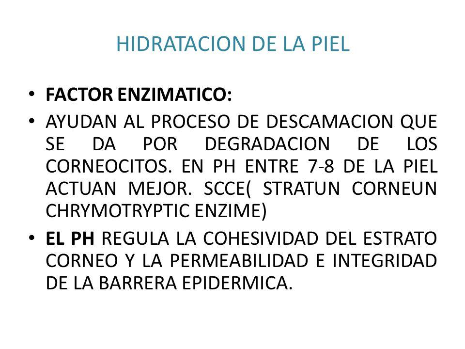 HIDRATACION DE LA PIEL FACTOR ENZIMATICO: