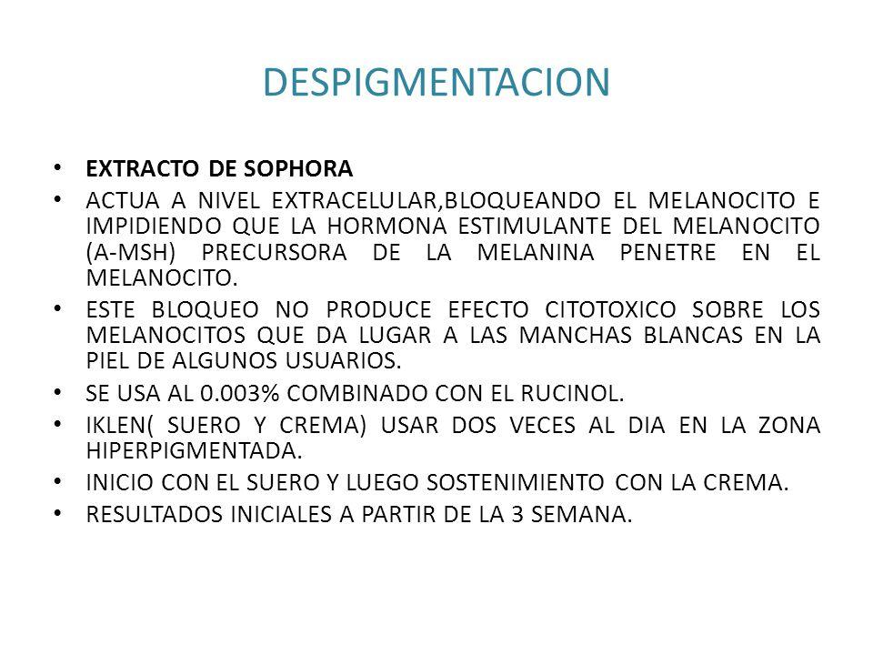 DESPIGMENTACION EXTRACTO DE SOPHORA