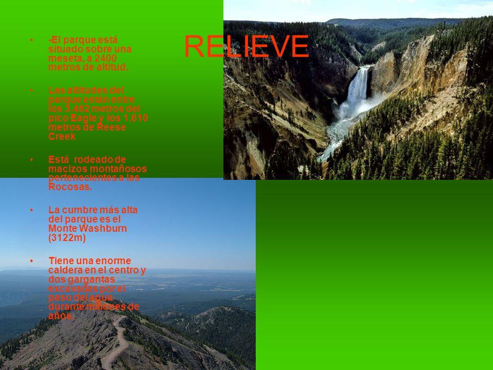 RELIEVE -El parque está situado sobre una meseta, a 2400 metros de altitud.