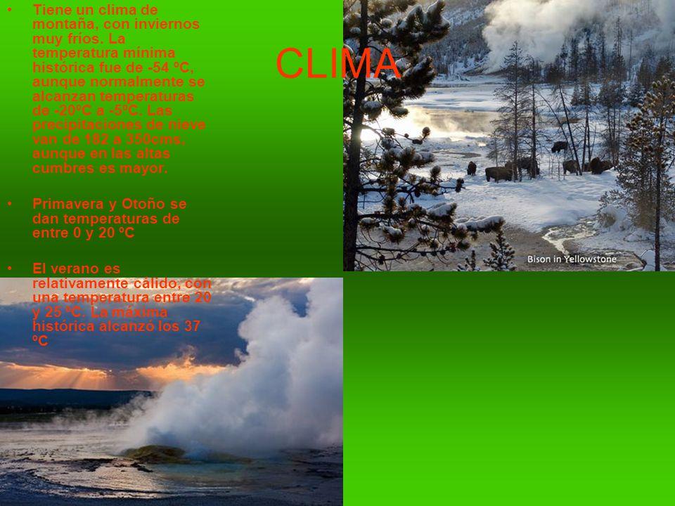 Tiene un clima de montaña, con inviernos muy fríos