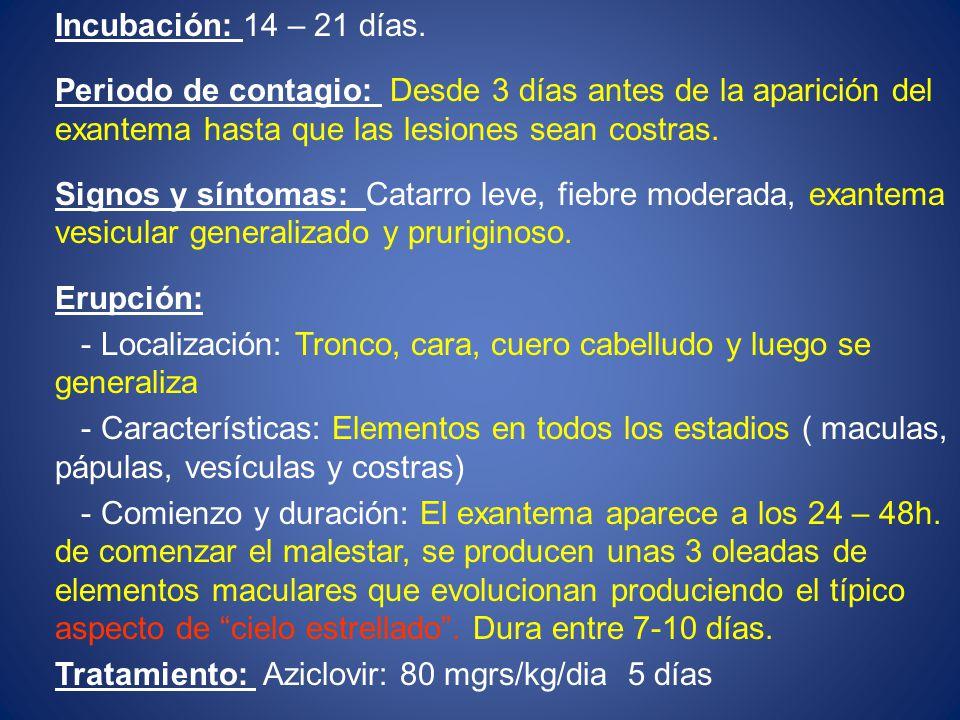 Incubación: 14 – 21 días. Periodo de contagio: Desde 3 días antes de la aparición del exantema hasta que las lesiones sean costras.