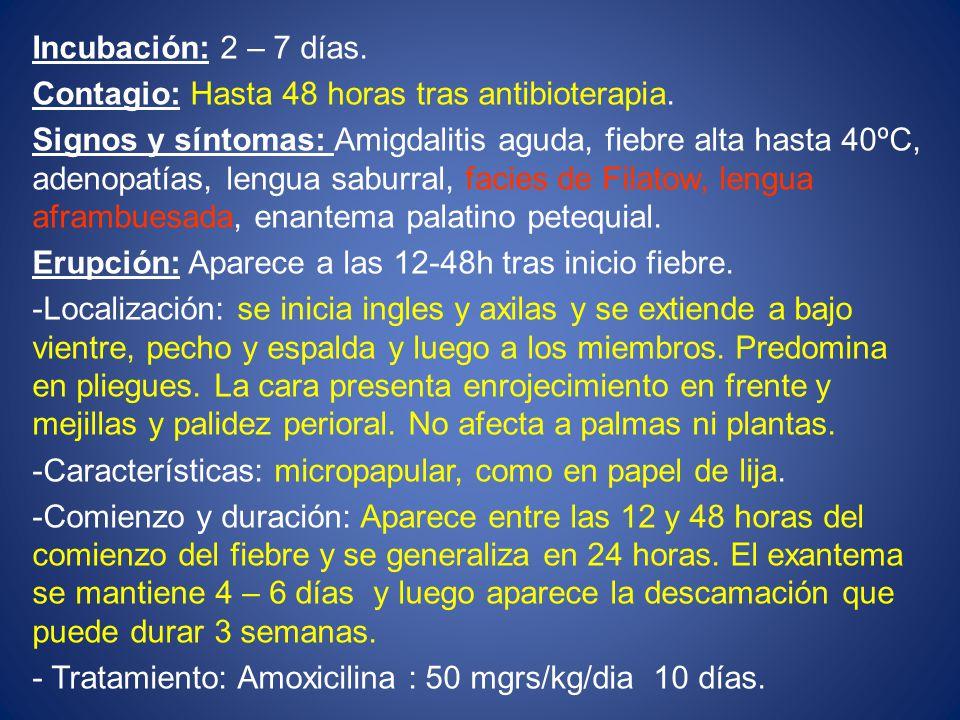 Incubación: 2 – 7 días. Contagio: Hasta 48 horas tras antibioterapia.
