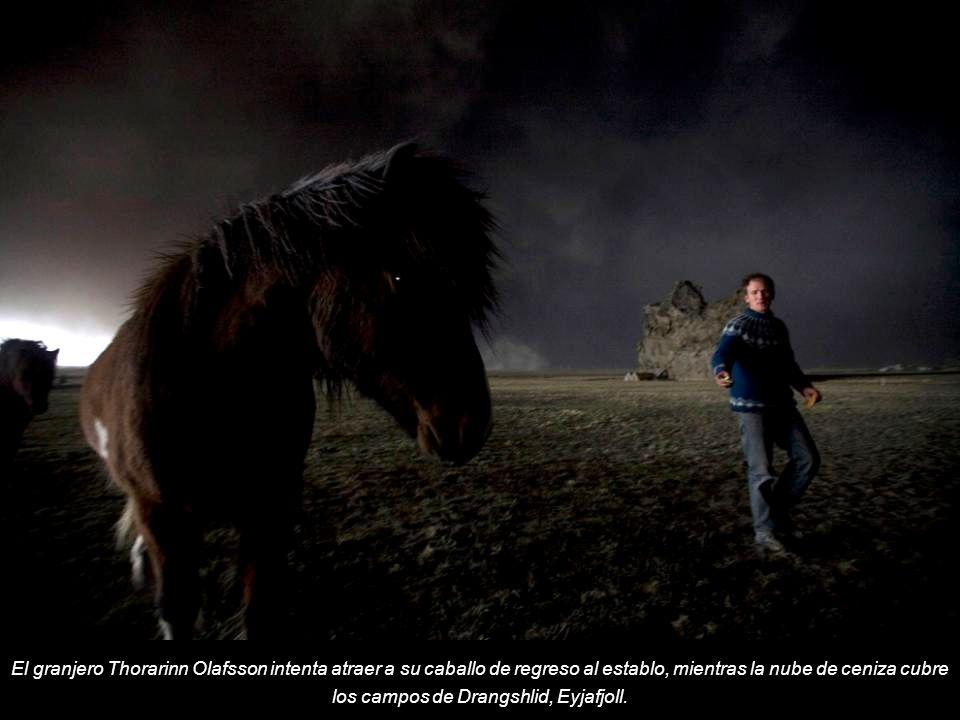 El granjero Thorarinn Olafsson intenta atraer a su caballo de regreso al establo, mientras la nube de ceniza cubre los campos de Drangshlid, Eyjafjoll.