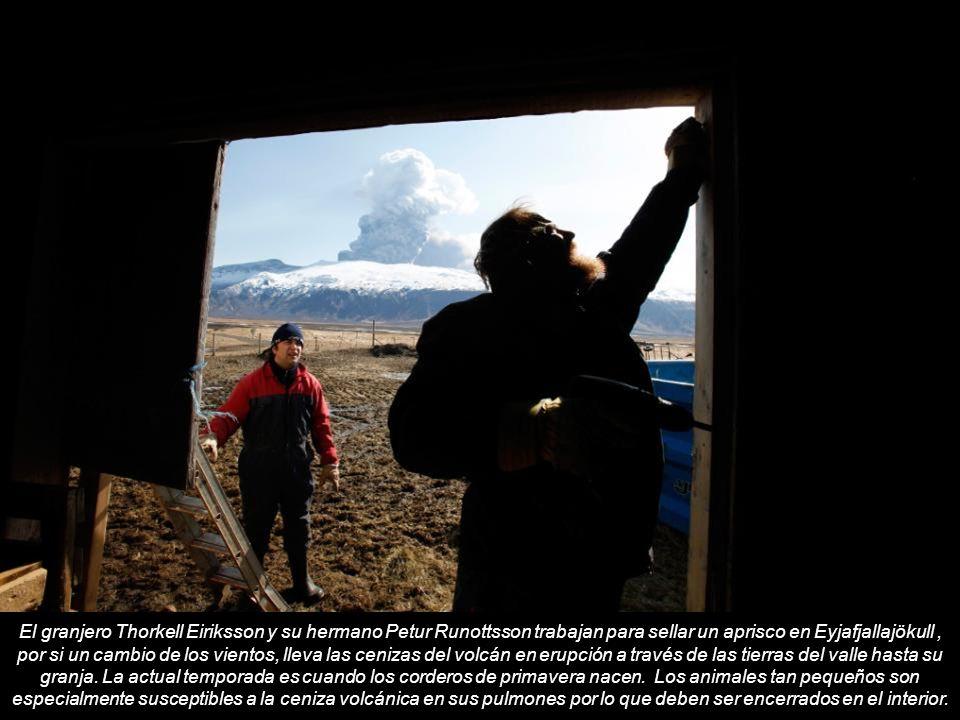 El granjero Thorkell Eiriksson y su hermano Petur Runottsson trabajan para sellar un aprisco en Eyjafjallajökull , por si un cambio de los vientos, lleva las cenizas del volcán en erupción a través de las tierras del valle hasta su granja.