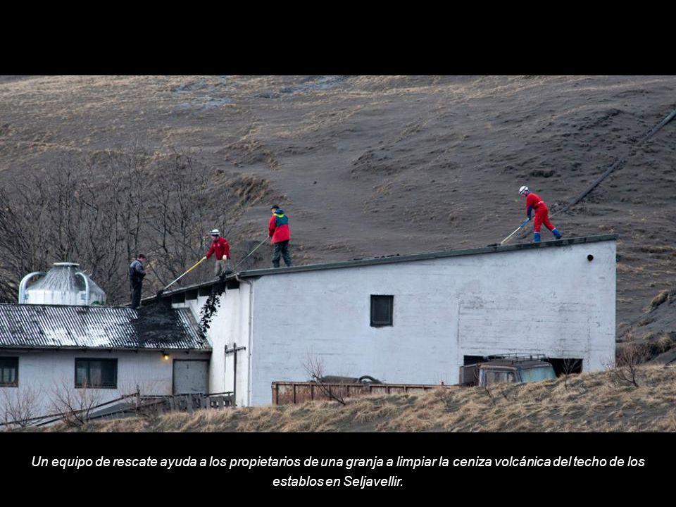 Un equipo de rescate ayuda a los propietarios de una granja a limpiar la ceniza volcánica del techo de los establos en Seljavellir.