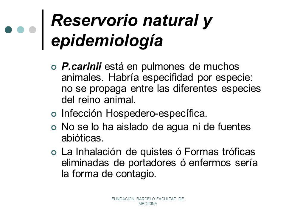 Reservorio natural y epidemiología