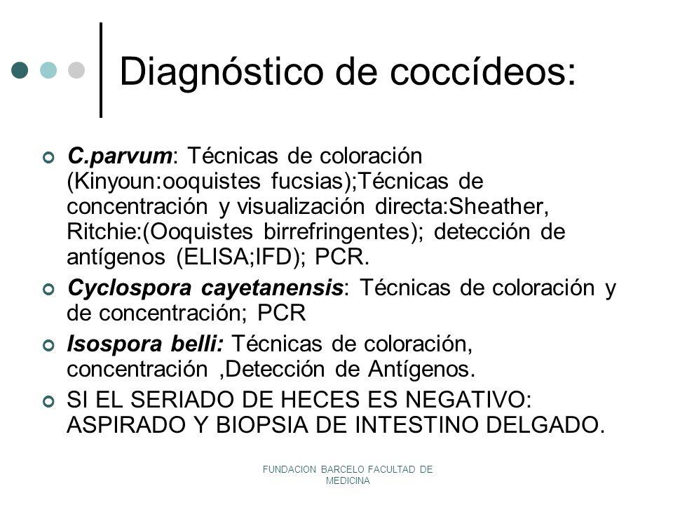 Diagnóstico de coccídeos: