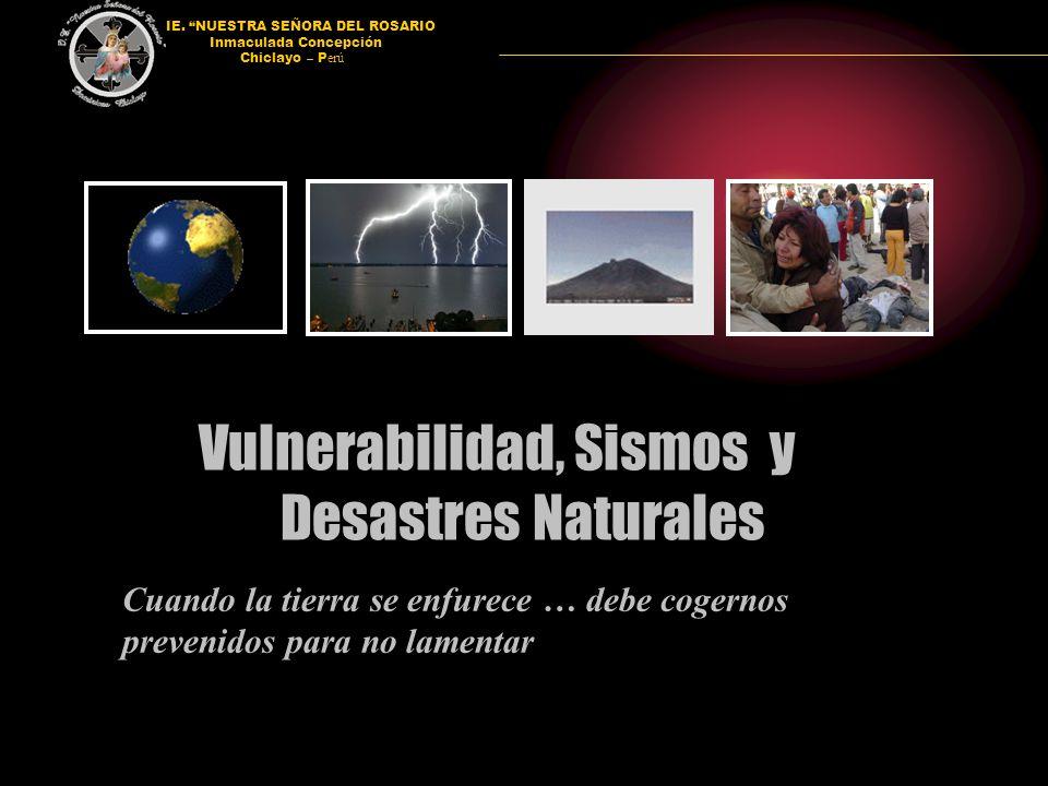 Vulnerabilidad, Sismos y Desastres Naturales