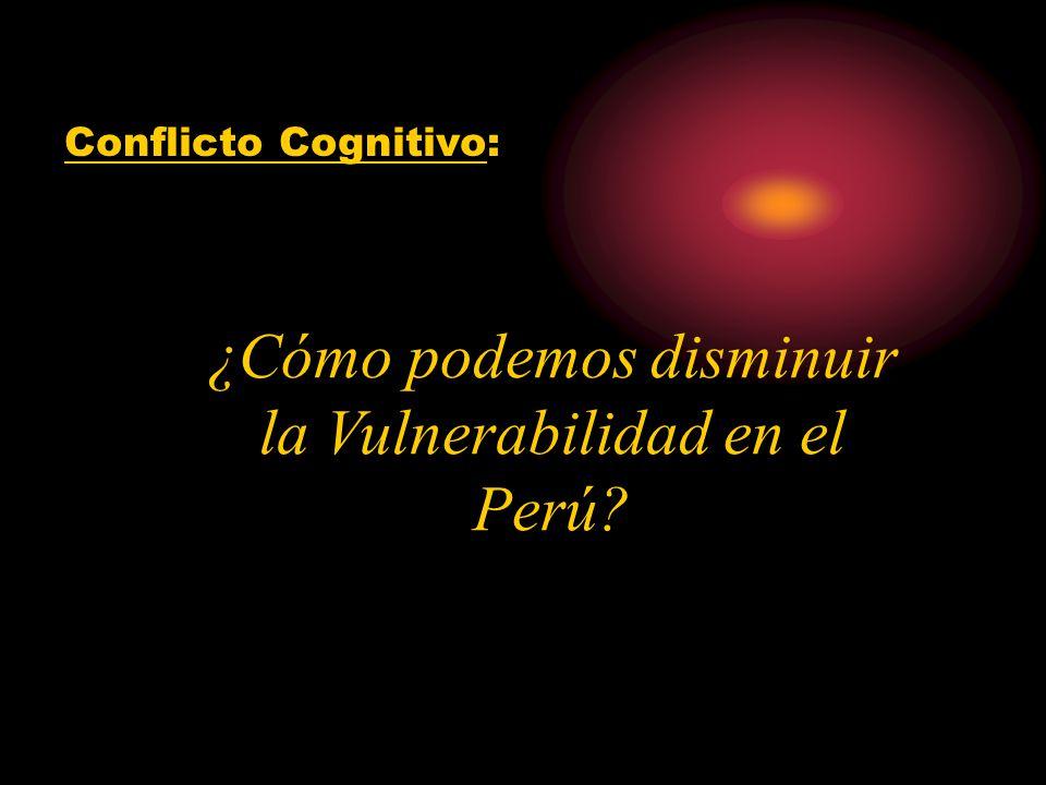 ¿Cómo podemos disminuir la Vulnerabilidad en el Perú