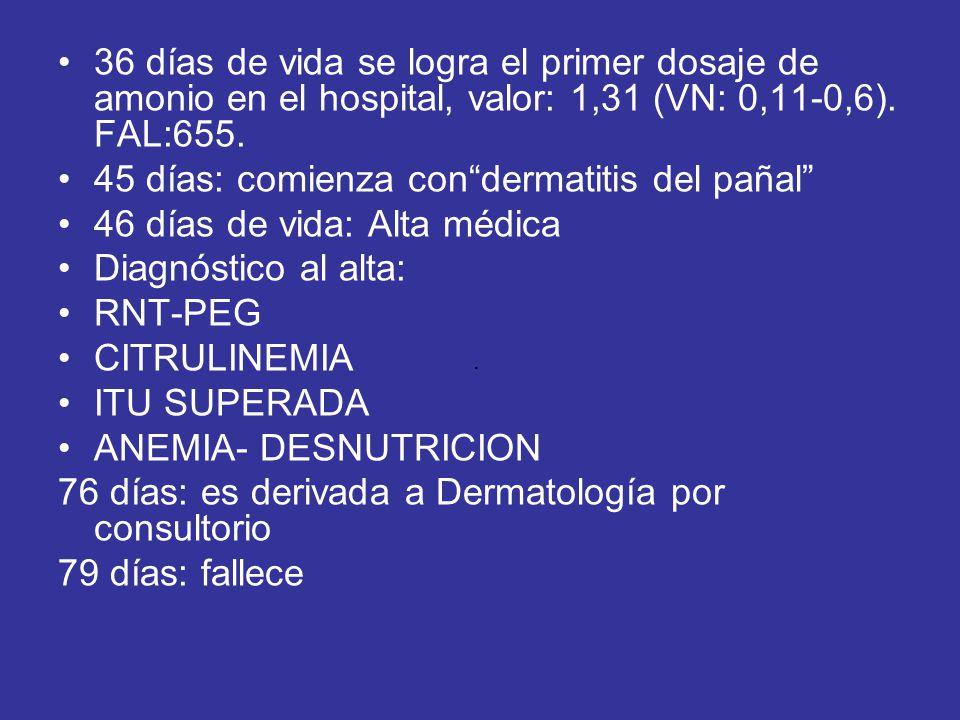 45 días: comienza con dermatitis del pañal