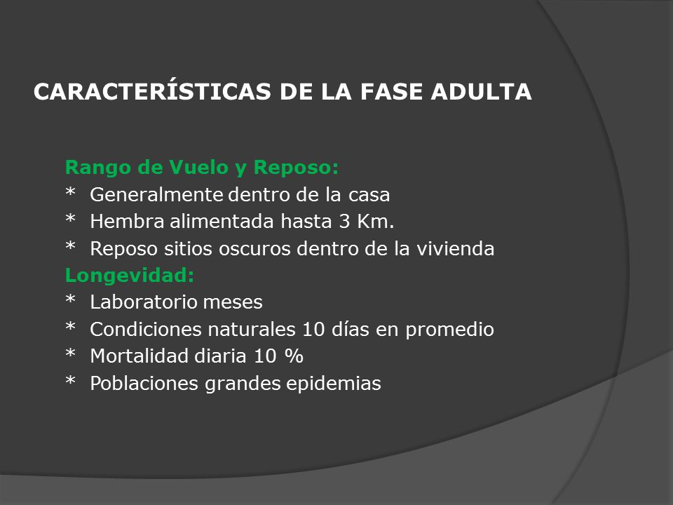 CARACTERÍSTICAS DE LA FASE ADULTA