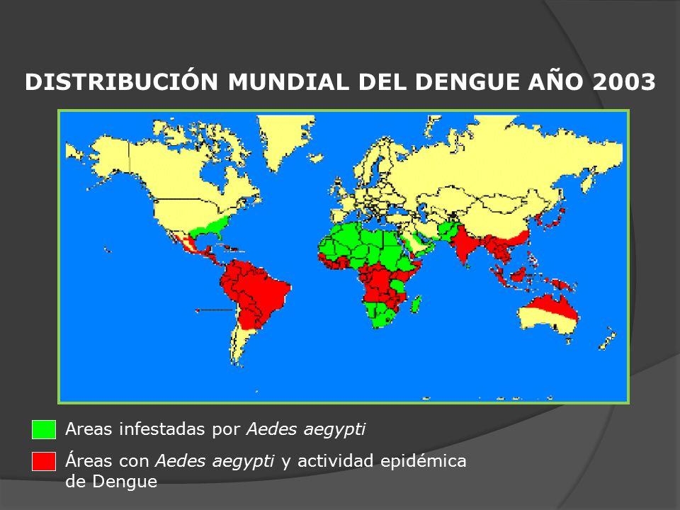 DISTRIBUCIÓN MUNDIAL DEL DENGUE AÑO 2003