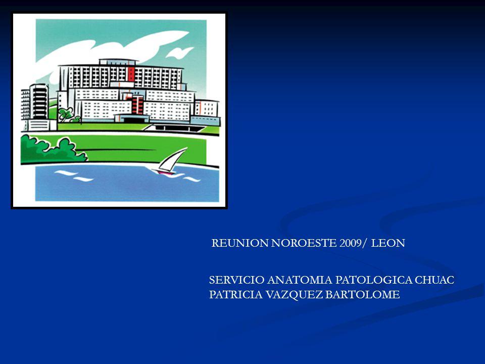 REUNION NOROESTE 2009/ LEON