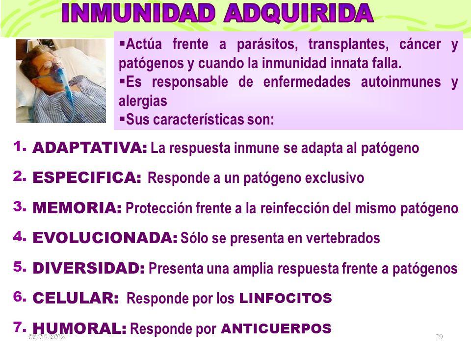 ADAPTATIVA: La respuesta inmune se adapta al patógeno