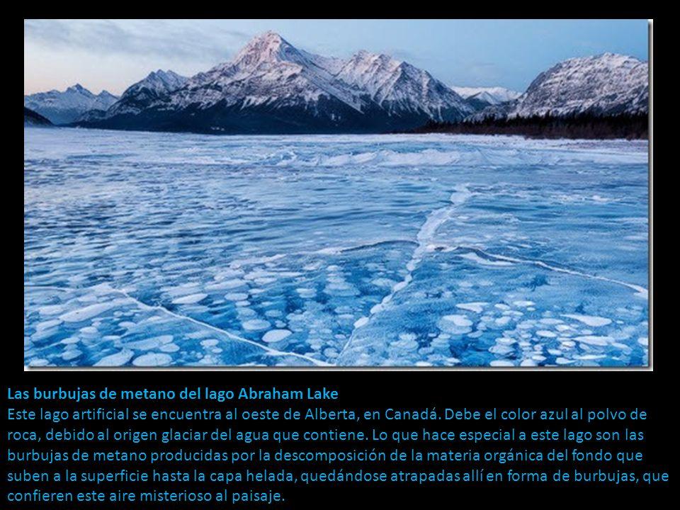 Las burbujas de metano del lago Abraham Lake Este lago artificial se encuentra al oeste de Alberta, en Canadá.