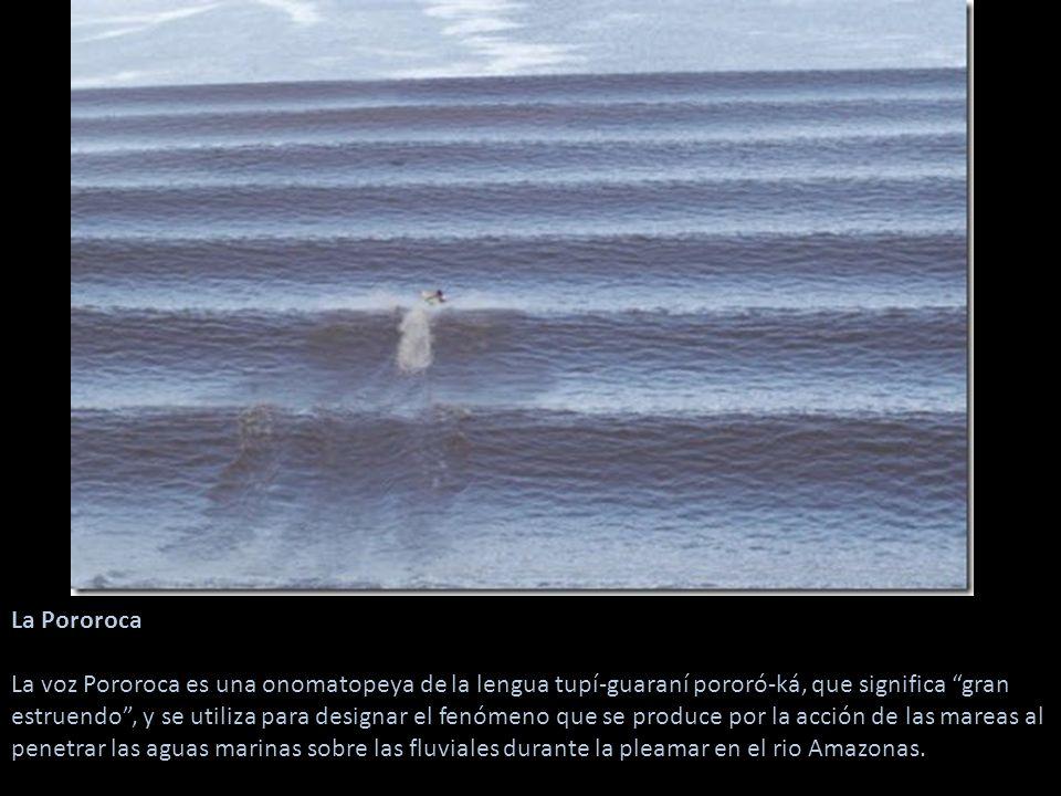 La Pororoca La voz Pororoca es una onomatopeya de la lengua tupí-guaraní pororó-ká, que significa gran estruendo , y se utiliza para designar el fenómeno que se produce por la acción de las mareas al penetrar las aguas marinas sobre las fluviales durante la pleamar en el rio Amazonas.
